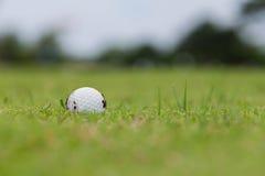 Palla da golf sul tratto navigabile Fotografia Stock Libera da Diritti