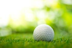 Palla da golf sul tratto navigabile Immagini Stock