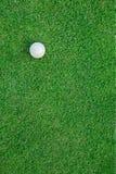 Palla da golf sull'erba per il fondo di web Immagine Stock Libera da Diritti