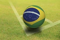 Palla del Brasile Fotografie Stock Libere da Diritti
