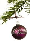Palla dell'albero di Natale Immagine Stock Libera da Diritti