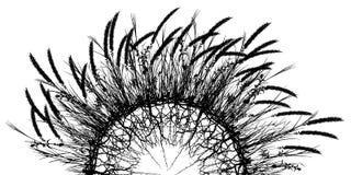 Palla dell'erba Immagine Stock