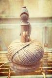 Palla della corda del giardino Fotografie Stock Libere da Diritti