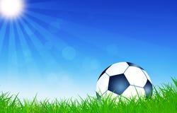 Palla di calcio sull'erba Fotografia Stock Libera da Diritti