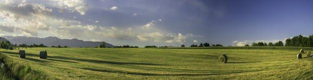 Palla di fieno nell'ampio paesaggio Fotografia Stock Libera da Diritti