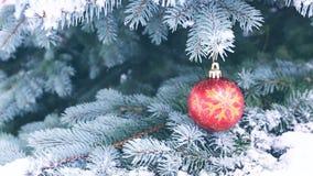 Palla di Natale che appende su un ramo di albero dell'abete Fondo di Natale con le precipitazioni nevose stock footage