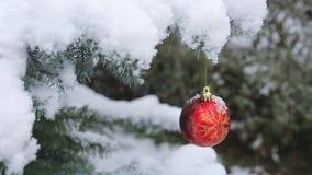 Palla di Natale che appende su un ramo di albero dell'abete Fondo di Natale con le precipitazioni nevose video d archivio