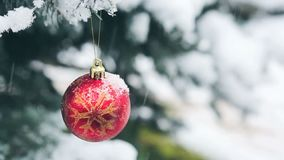 Palla di Natale che appende su un ramo di albero dell'abete Priorità bassa di natale video d archivio