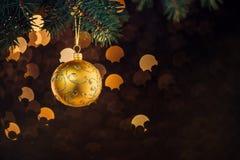 Palla di Natale che appende sul ramoscello attillato fotografie stock