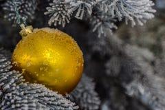 Palla di natale dell'oro Fotografie Stock
