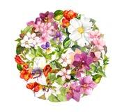Palla floreale - fiori nel modello del cerchio, farfalle watercolor Fotografia Stock Libera da Diritti