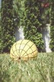 Palla gialla Immagini Stock