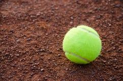 Palla gialla per tennis Immagine Stock