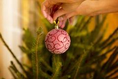 Palla rossa brillante d'attaccatura di Natale della mano del ` s della donna sul tre di Natale Immagini Stock