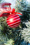 Palla rossa delle decorazioni di Natale grande che tiene all'aperto disponibile Immagini Stock