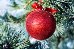 Palla rossa delle decorazioni di Natale grande sull'albero di natale all'aperto Fotografie Stock