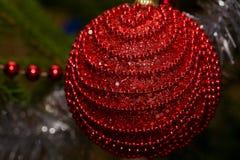 Palla rossa di Natale sul primo piano dell'albero Immagini Stock Libere da Diritti
