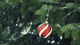 Palla rossa di Natale sul ramo dell'abete stock footage