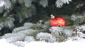 Palla rossa di Natale sul ramo dell'abete coperto di neve stock footage