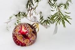 Palla rossa di Natale sull'albero di abete nevoso Fotografie Stock
