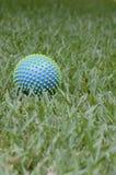 Palla su un'erba Immagine Stock Libera da Diritti