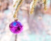 Palla su un pelliccia-albero di legno verde di Natale Fotografie Stock