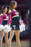 2014 pallacanestro del NCAA - acclamazione/ballo Immagini Stock