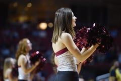 2014 pallacanestro del NCAA - acclamazione/ballo Immagini Stock Libere da Diritti