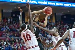 2016 pallacanestro del NCAA - Cincinnati al tempio Fotografie Stock Libere da Diritti