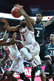 2016 pallacanestro del NCAA - Cincinnati al tempio Fotografia Stock Libera da Diritti