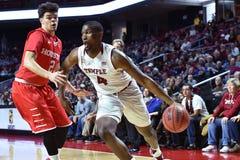 2016 pallacanestro del NCAA - Houston al tempio Immagini Stock Libere da Diritti