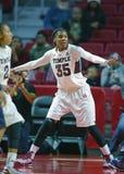 2014 pallacanestro del NCAA - la pallacanestro delle donne Immagine Stock Libera da Diritti