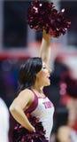 2014 pallacanestro del NCAA - squadra di spirito Fotografie Stock