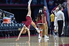 2015 pallacanestro del NCAA - tempio contro lo stato del Delaware Immagini Stock