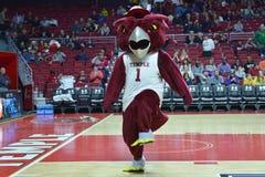 2015 pallacanestro del NCAA - Tempio-ECU Fotografia Stock Libera da Diritti