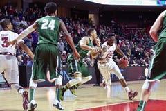 2015 pallacanestro del NCAA - tempio-Tulane Immagine Stock