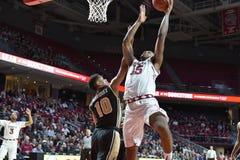 2015 pallacanestro del NCAA - tempio - UCF Fotografia Stock
