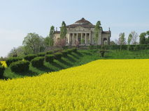Palladios Villa La Rotonda with a yellow field of. Palladios Villa La Rotonda in spring with a yellow field of rapeseed in Vicenza, Italy Stock Image