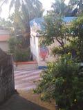 Pallam стоковое изображение rf