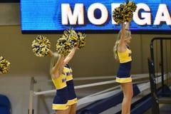 Pallavolo 2015 del NCAA - Virginia Occidentale del Texas @ Fotografia Stock Libera da Diritti