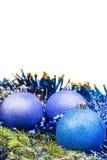 Palle blu e viola di natale sul ramo attillato verde Immagini Stock Libere da Diritti