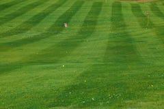 Palle da golf sull'erba verde Immagini Stock