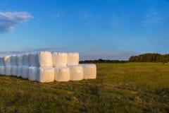 Palle del fieno su un campo - come l'estate si conclude e approccio che di autunno un tempo di raccolto comincia in preparazione  Fotografia Stock Libera da Diritti