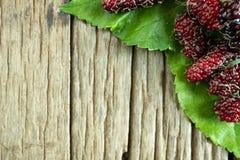Palle del gelso sulle foglie del gelso, fondo di legno immagine stock