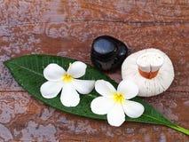 Palle della compressa di massaggio della stazione termale, palla di erbe con il fiore e stazione termale della roccia, Tailandia Fotografia Stock Libera da Diritti