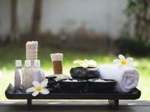 Palle della compressa di massaggio della stazione termale, palla di erbe con il fiore ed aroma, Tailandia, fuoco scelto Fotografia Stock Libera da Diritti