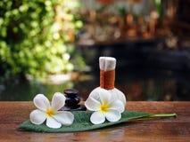 Palle della compressa di massaggio della stazione termale, palla di erbe e stazione termale della roccia con il fiore, Tailandia Fotografia Stock Libera da Diritti