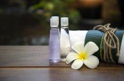 Palle della compressa di massaggio della stazione termale, palla di erbe sul di legno con la stazione termale di trattamenti, Tai Immagine Stock Libera da Diritti