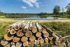 Palle di legno sul lago nella foresta Fotografia Stock