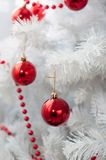 Palle rosse su un albero di Natale Fotografie Stock Libere da Diritti
